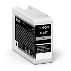 Epson Singlepack Gray T46S7 Ultrachrome